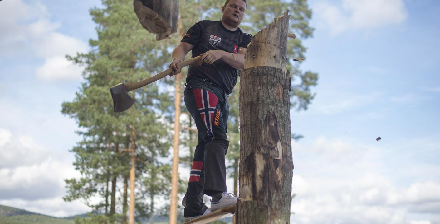 Vebjørn Sønsteby, Nordisk Mesterskap 2019 i Dølemo.